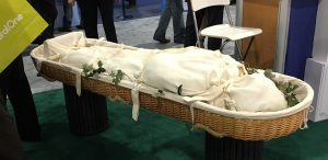 willw-casket